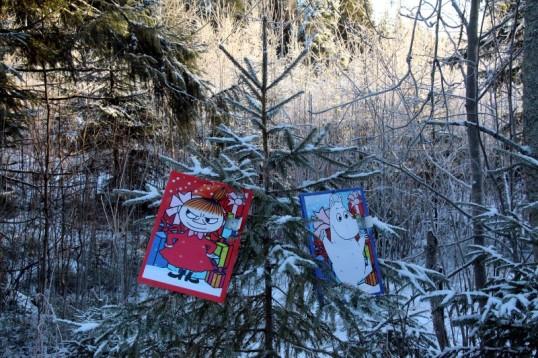 Muumipeikko- ja Pikku myy -joulukalenterit kuusessa metsän keskellä.