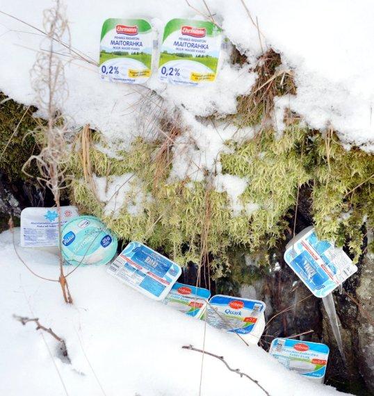 Erilaisia rahkapakkauksia talvisen sammalen ympärillä.