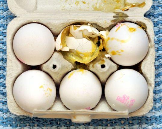 Kuuden munan kenno, jossa keskellä yksi hajonnut ja ympäristöön levinnyt muna.