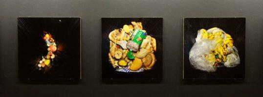 Seinällä kolme valokuvataulua, joissa on kuvattu elintarvikkeita jäteastiassa: kasviksia, leipiä, banaaneja.