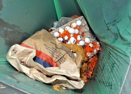 Vihreällä biojätepussilla vuoratussa roska-astiassa paperisäkki, kasvissosetta, raasteita sekä kananmunia kennoineen.