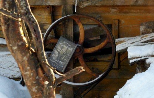 Puiden salattu elämä -kirja puimakoneen hihnapyörällä. Etualalla puu.