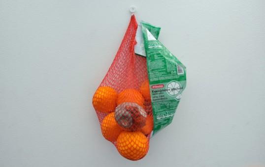 Oransseja appelsiineja ja yksi homeinen appelsiini vaalealle seinälle ripustetussa verkkopussissa.