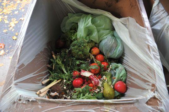 Parsakaali, päärynä, omenoita, tomaatteja ja muita kasviksia biojäteastiassa.