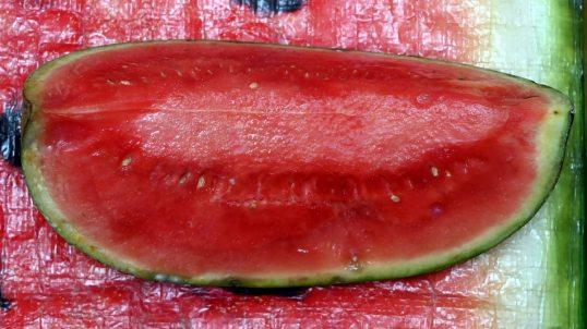 Vesimelonin lohko vesimelonipainatuksella varustetun muovisen kestokassin päällä.